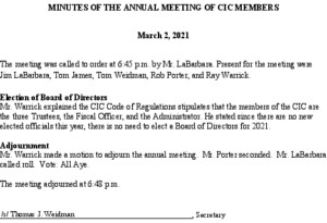 Icon of Minutes Of The Annual Meeting Of CIC Members 03 02 2021