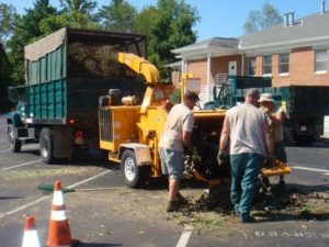Brush Chipping - FREE for Residents