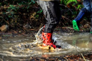 Guided Nature Creek Walk for Kids! @ Bechtold Park (Meet at Shelter 4) | Cincinnati | Ohio | United States